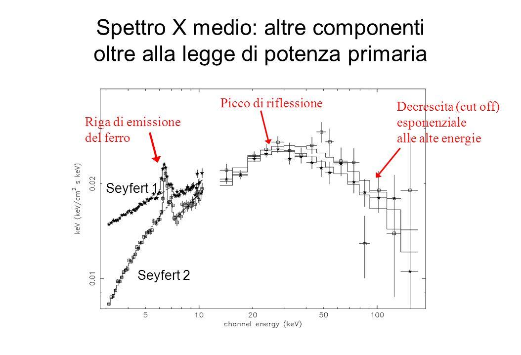 Spettro X medio: altre componenti oltre alla legge di potenza primaria