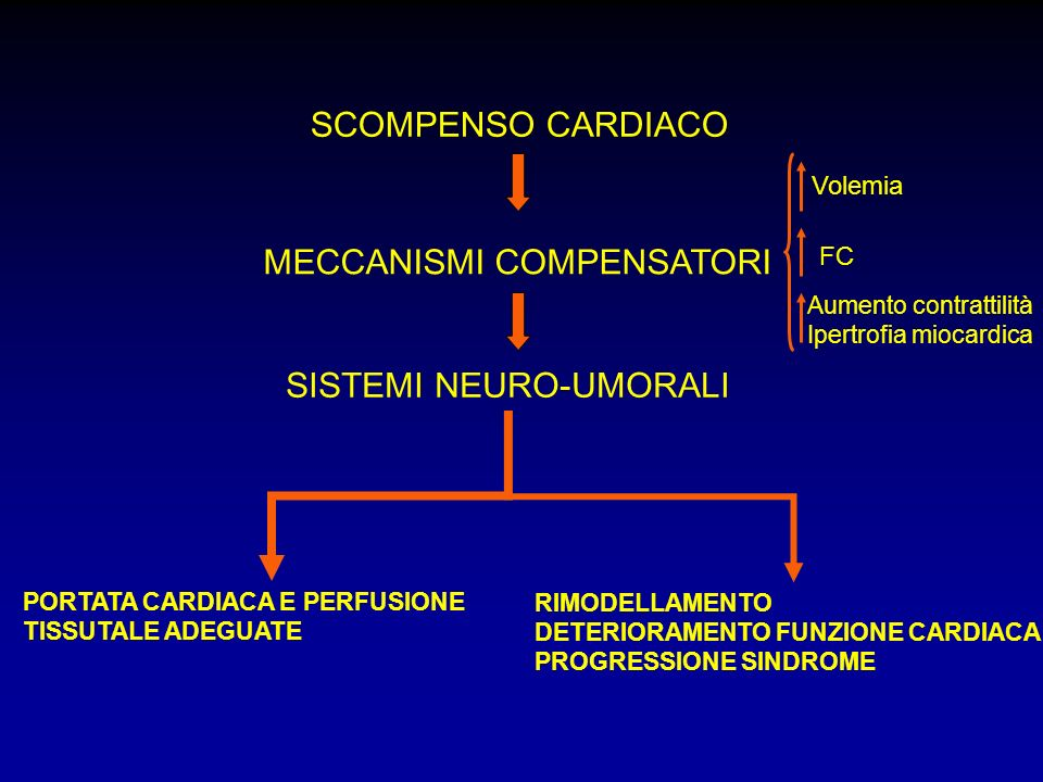 MECCANISMI COMPENSATORI