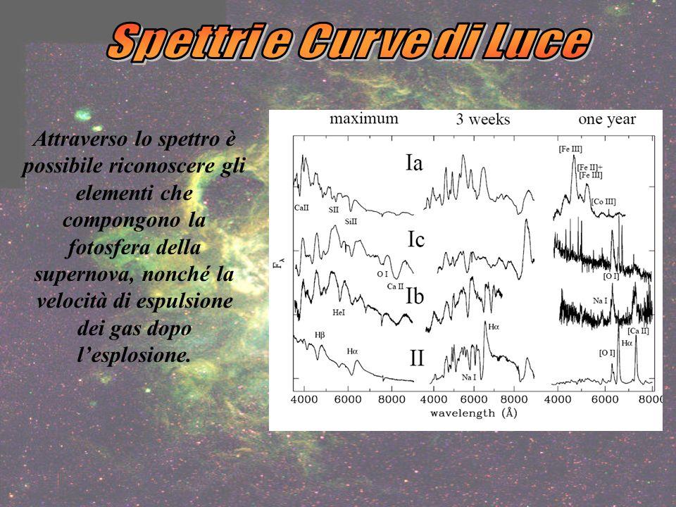 Spettri e Curve di Luce