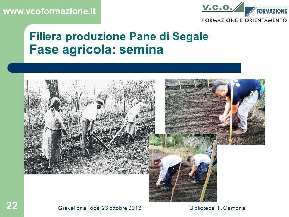 Filiera produzione Pane di Segale Fase agricola: semina