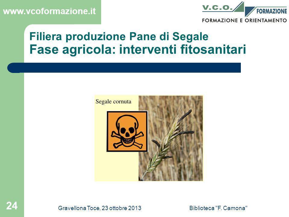 Filiera produzione Pane di Segale Fase agricola: interventi fitosanitari
