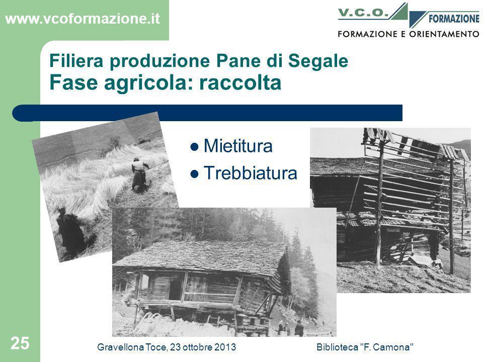 Filiera produzione Pane di Segale Fase agricola: raccolta