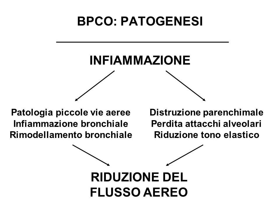 BPCO: PATOGENESI INFIAMMAZIONE RIDUZIONE DEL FLUSSO AEREO