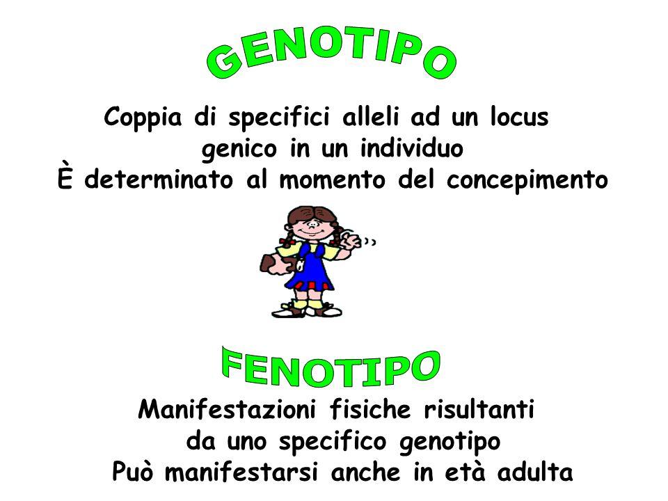 GENOTIPO FENOTIPO Coppia di specifici alleli ad un locus