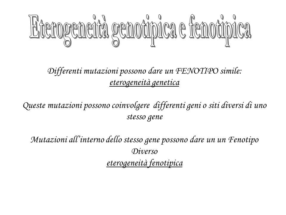 Eterogeneità genotipica e fenotipica