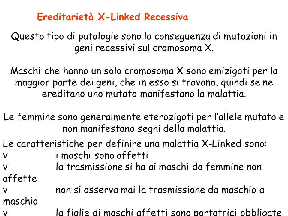 Ereditarietà X-Linked Recessiva