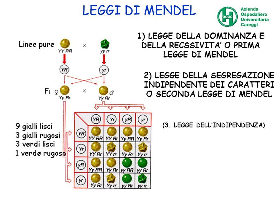 LEGGI DI MENDEL 1) LEGGE DELLA DOMINANZA E DELLA RECSSIVITA' O PRIMA LEGGE DI MENDEL.