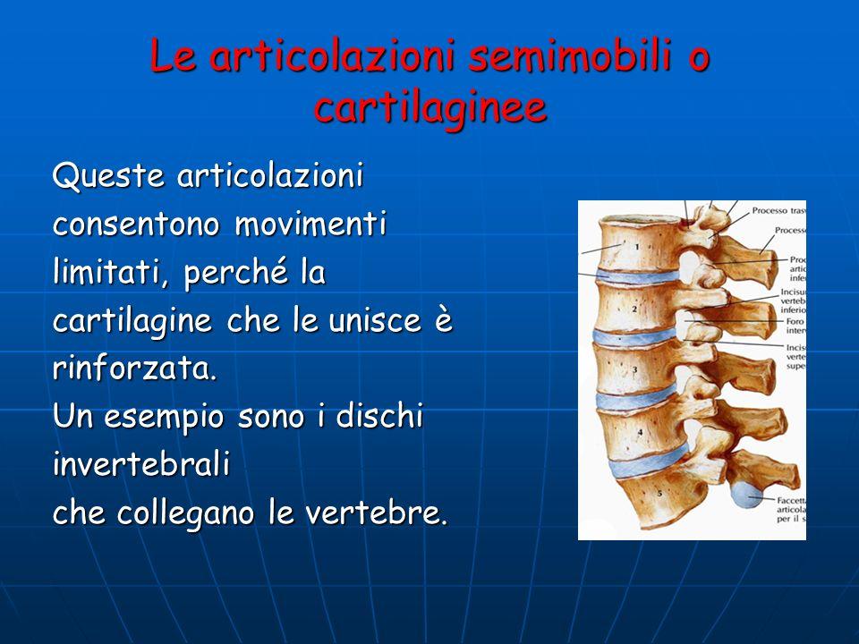 Le articolazioni semimobili o cartilaginee