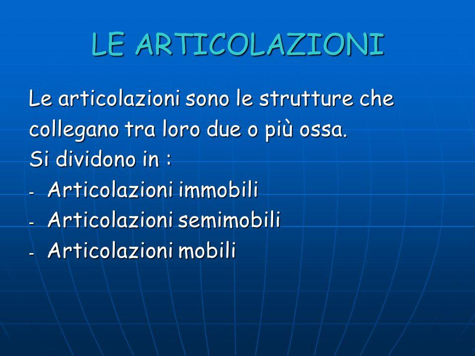 LE ARTICOLAZIONI Le articolazioni sono le strutture che