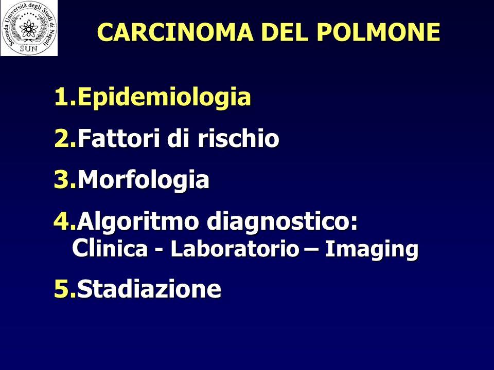 CARCINOMA DEL POLMONE Epidemiologia. Fattori di rischio. Morfologia. Algoritmo diagnostico: Clinica - Laboratorio – Imaging.