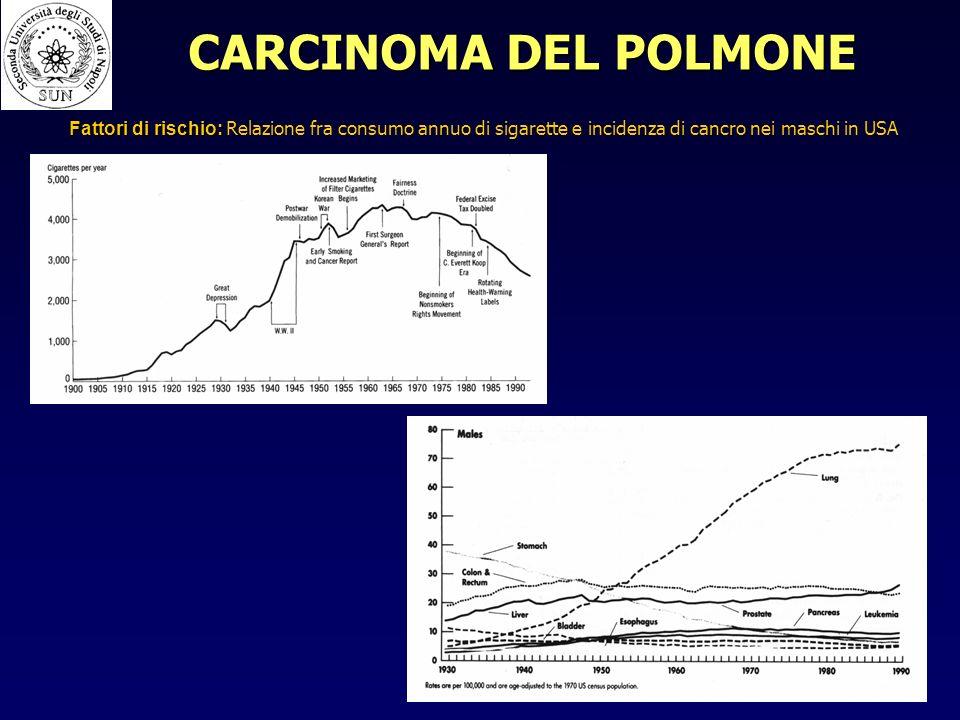 CARCINOMA DEL POLMONE Fattori di rischio: Relazione fra consumo annuo di sigarette e incidenza di cancro nei maschi in USA.