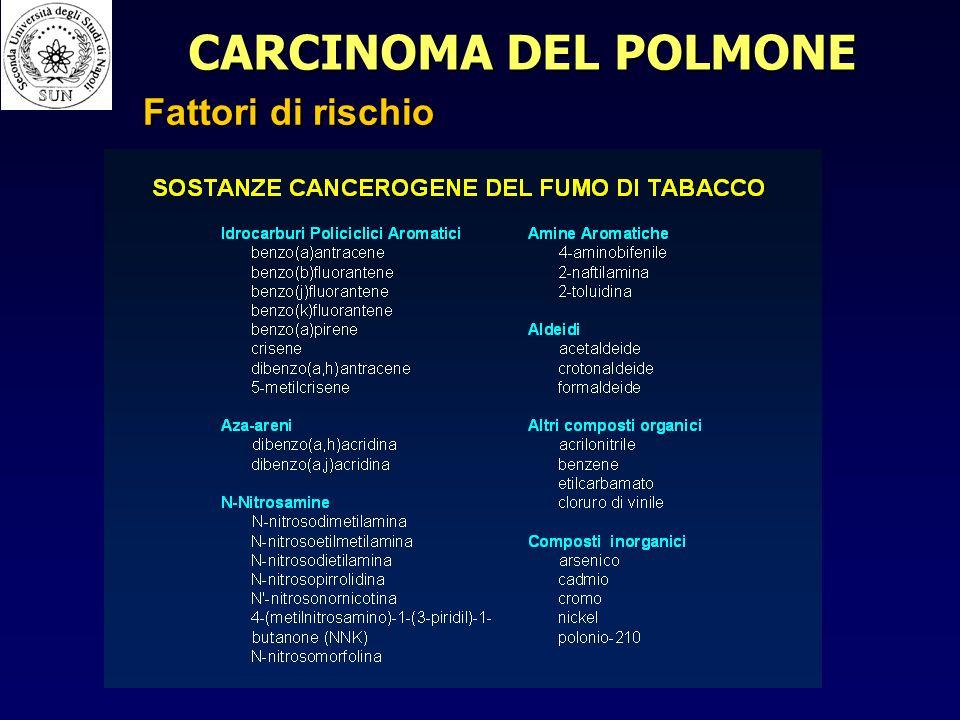 CARCINOMA DEL POLMONE Fattori di rischio