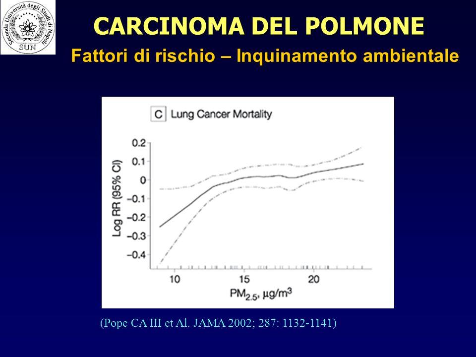 CARCINOMA DEL POLMONE Fattori di rischio – Inquinamento ambientale