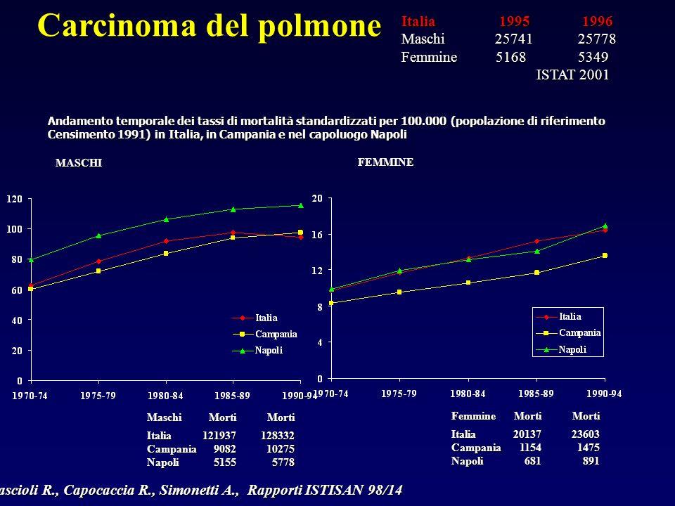 Cascioli R., Capocaccia R., Simonetti A., Rapporti ISTISAN 98/14