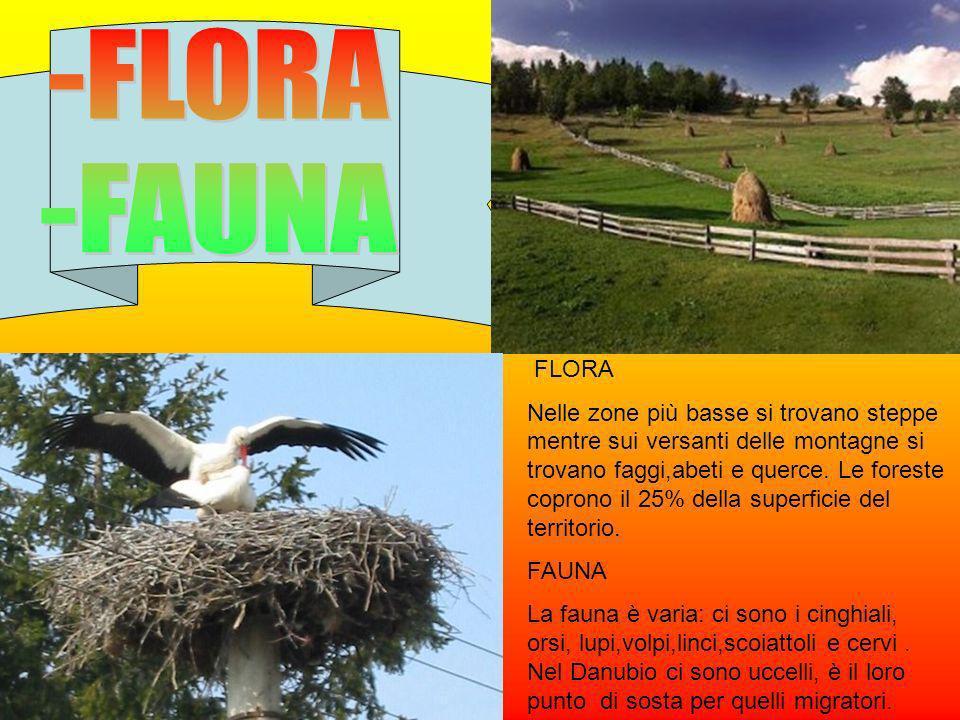 -FLORA -FAUNA. FLORA.