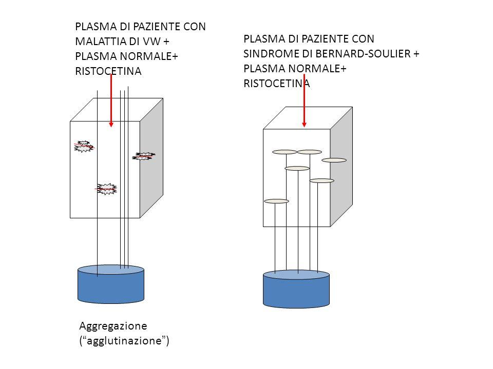 PLASMA DI PAZIENTE CON MALATTIA DI VW + PLASMA NORMALE+ RISTOCETINA. Aggregazione. ( agglutinazione )