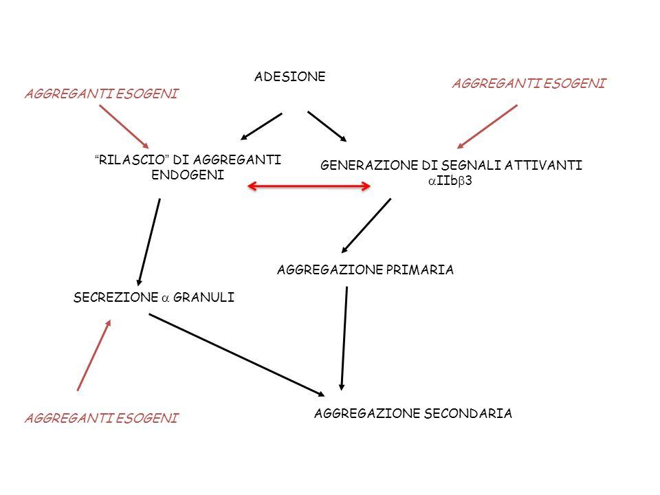 GENERAZIONE DI SEGNALI ATTIVANTI aIIbb3 RILASCIO DI AGGREGANTI