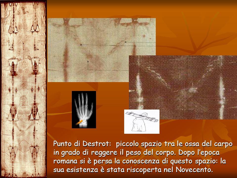 Punto di Destrot: piccolo spazio tra le ossa del carpo in grado di reggere il peso del corpo.