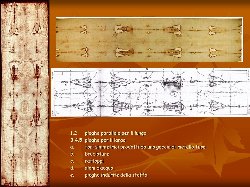 1.2 pieghe parallele per il lungo