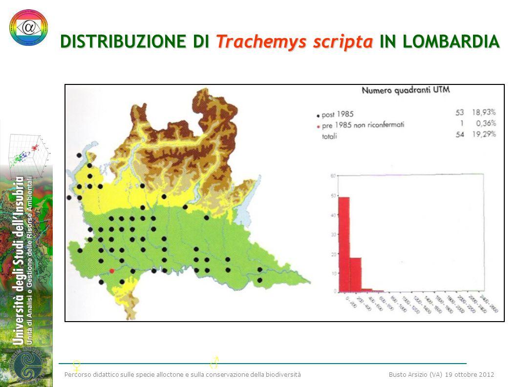 DISTRIBUZIONE DI Trachemys scripta IN LOMBARDIA