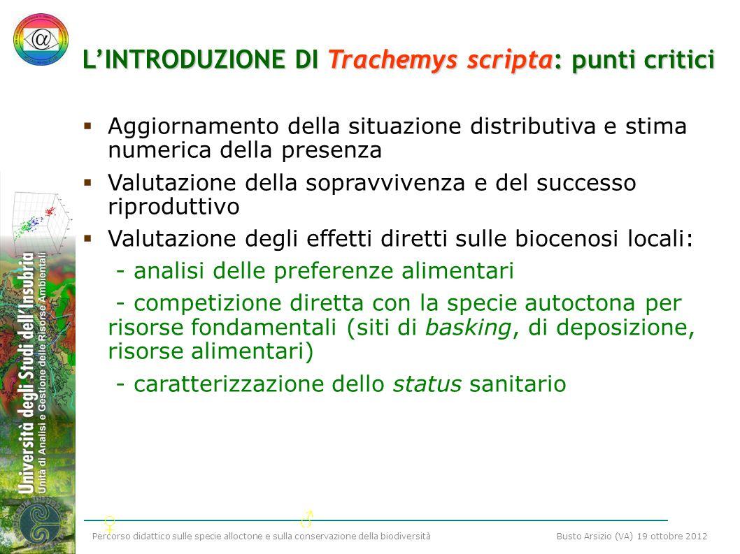L'INTRODUZIONE DI Trachemys scripta: punti critici
