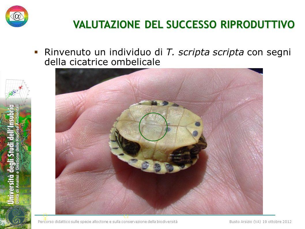 VALUTAZIONE DEL SUCCESSO RIPRODUTTIVO