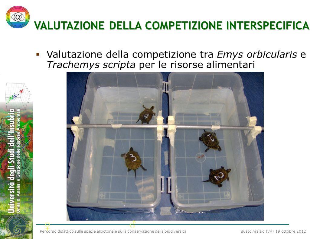 VALUTAZIONE DELLA COMPETIZIONE INTERSPECIFICA