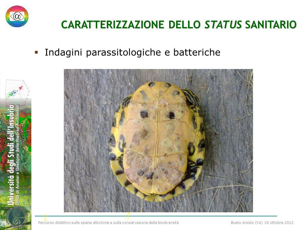 CARATTERIZZAZIONE DELLO STATUS SANITARIO