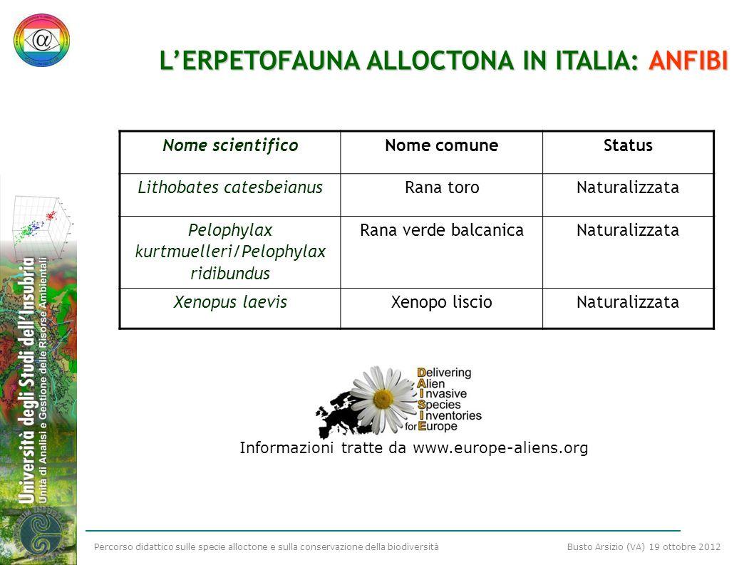 L'ERPETOFAUNA ALLOCTONA IN ITALIA: ANFIBI