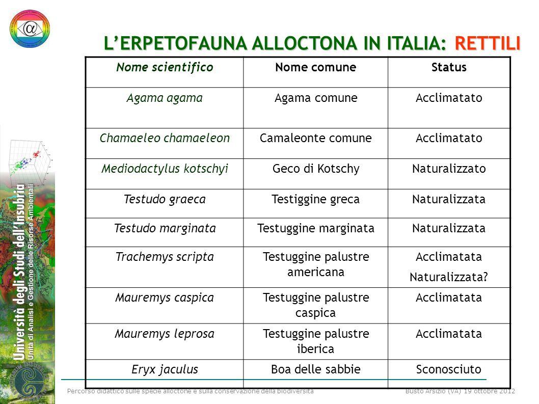 L'ERPETOFAUNA ALLOCTONA IN ITALIA: RETTILI