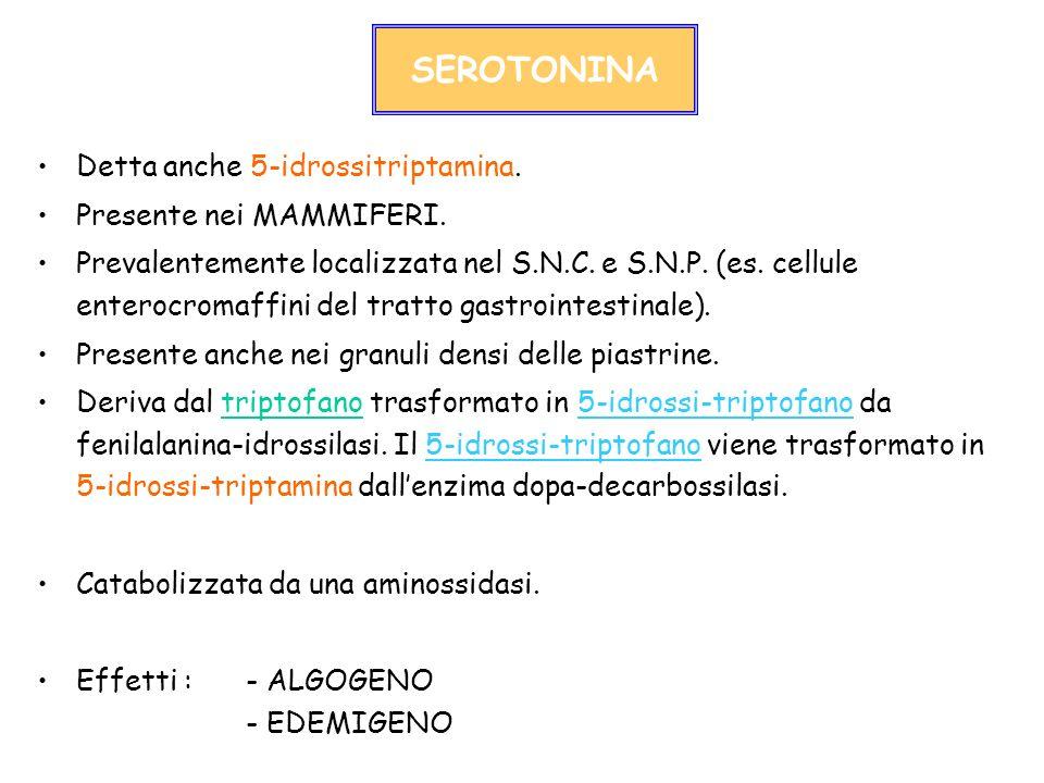 SEROTONINA Detta anche 5-idrossitriptamina. Presente nei MAMMIFERI.