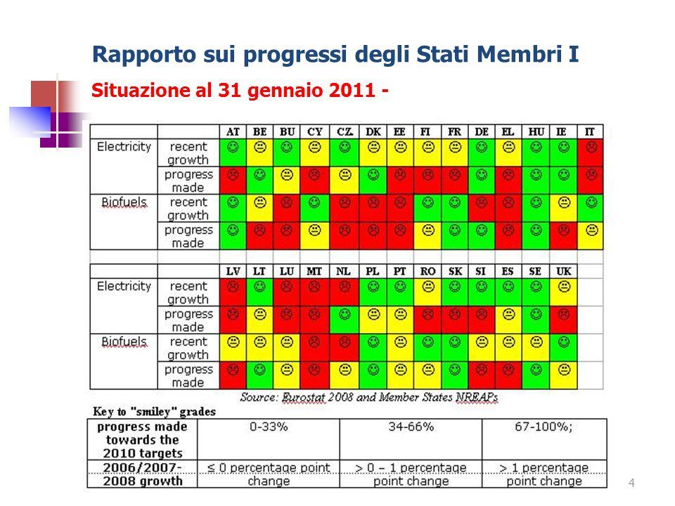 Rapporto sui progressi degli Stati Membri I Situazione al 31 gennaio 2011 -