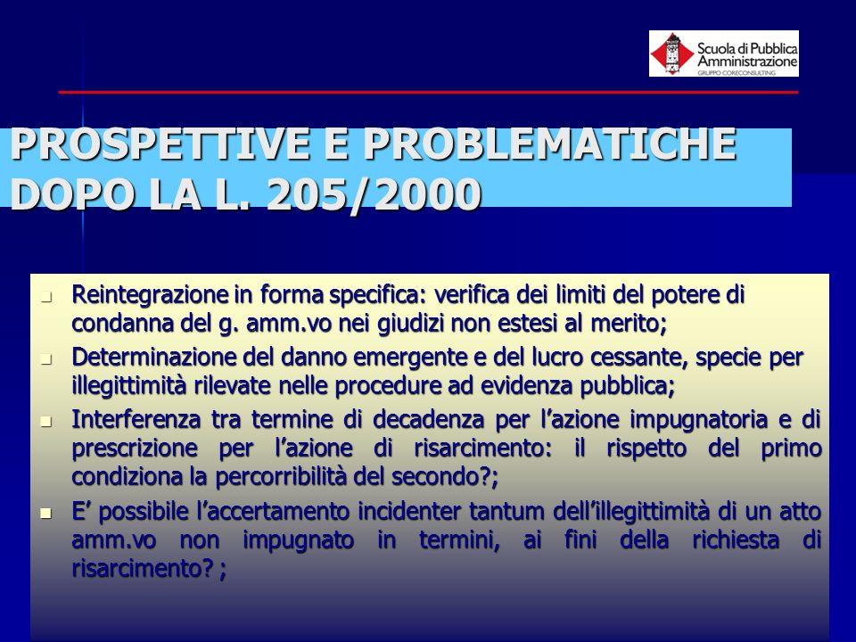 PROSPETTIVE E PROBLEMATICHE DOPO LA L. 205/2000