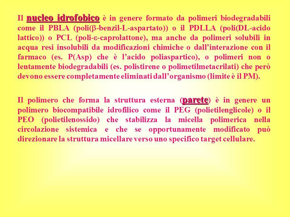 Il nucleo idrofobico è in genere formato da polimeri biodegradabili come il PBLA (poli(-benzil-L-aspartato)) o il PDLLA (poli(DL-acido lattico)) o PCL (poli--caprolattone), ma anche da polimeri solubili in acqua resi insolubili da modificazioni chimiche o dall'interazione con il farmaco (es. P(Asp) che è l'acido poliaspartico), o polimeri non o lentamente biodegradabili (es. polistirene o polimetilmetacrilati) che però devono essere completamente eliminati dall'organismo (limite è il PM).