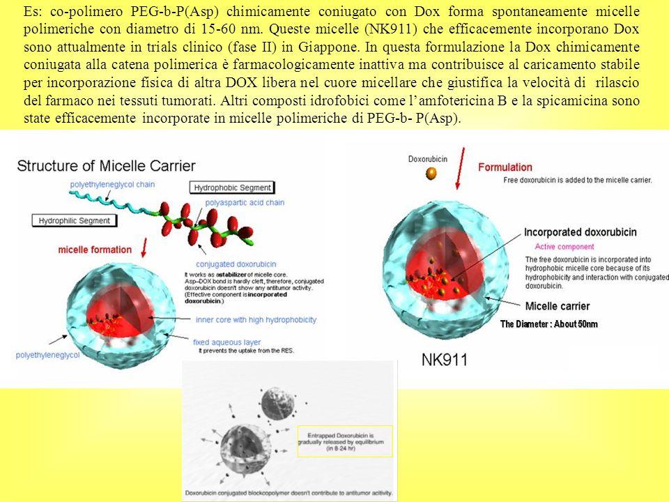 Es: co-polimero PEG-b-P(Asp) chimicamente coniugato con Dox forma spontaneamente micelle polimeriche con diametro di 15-60 nm.