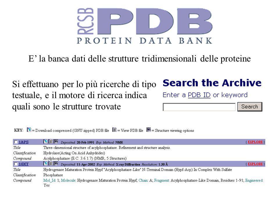 E' la banca dati delle strutture tridimensionali delle proteine
