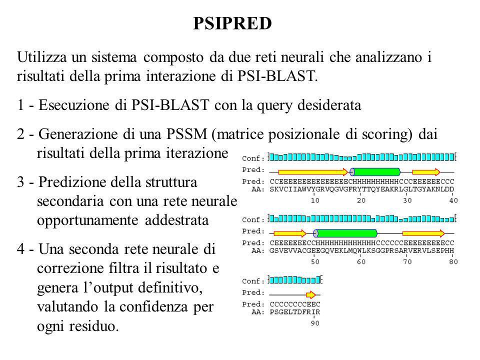 PSIPRED Utilizza un sistema composto da due reti neurali che analizzano i risultati della prima interazione di PSI-BLAST.