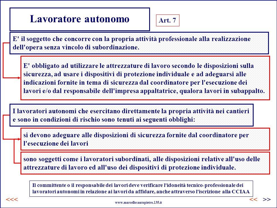 Lavoratore autonomo Art. 7