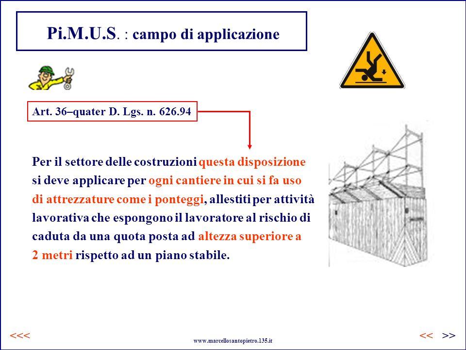 Pi.M.U.S. : campo di applicazione