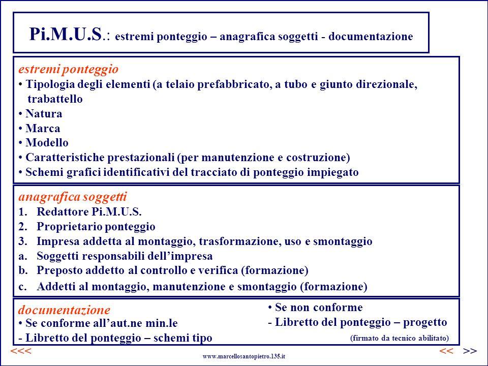 Pi.M.U.S.: estremi ponteggio – anagrafica soggetti - documentazione