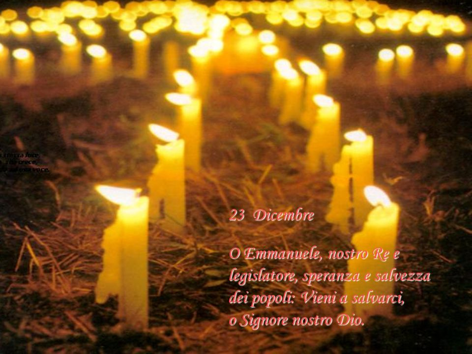23 Dicembre O Emmanuele, nostro Re e legislatore, speranza e salvezza. dei popoli: Vieni a salvarci,