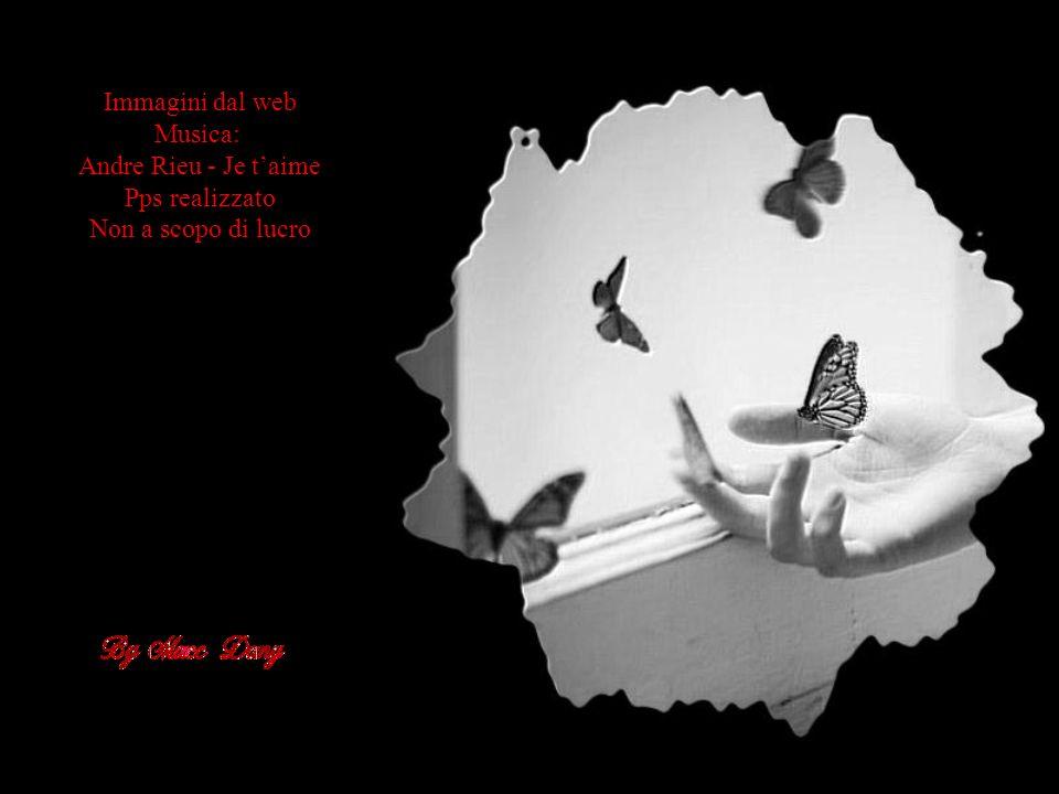 Immagini dal web Musica: Andre Rieu - Je t'aime Pps realizzato Non a scopo di lucro