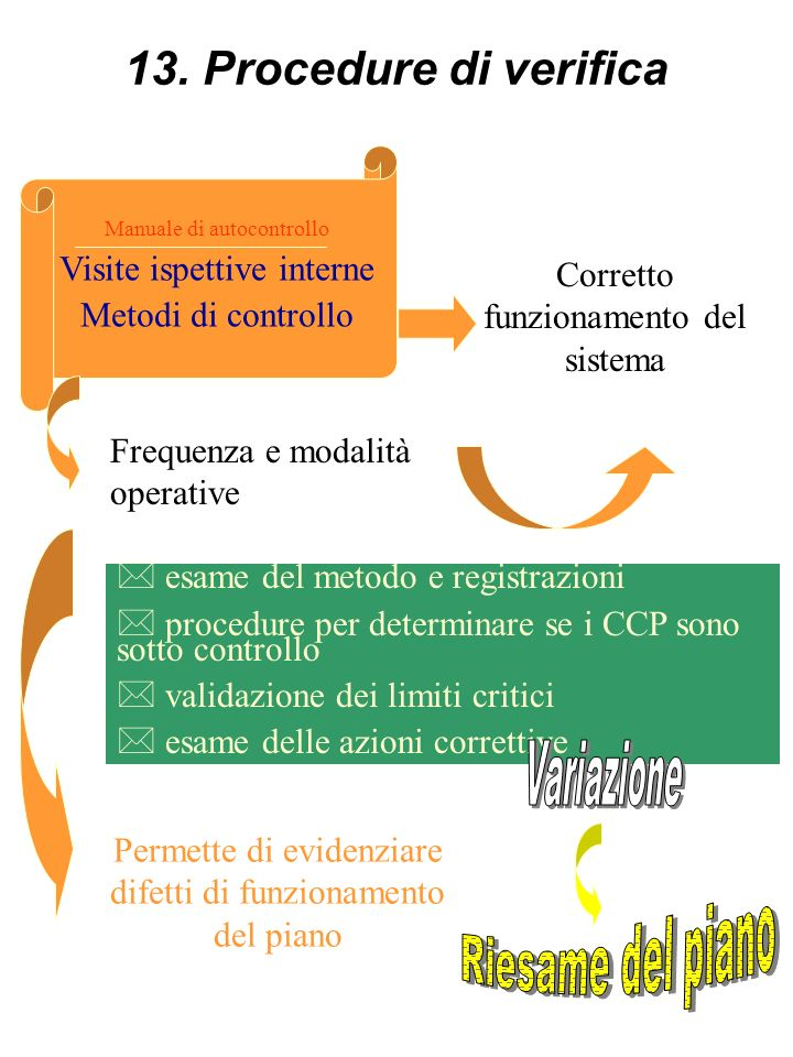 13. Procedure di verifica Riesame del piano Visite ispettive interne