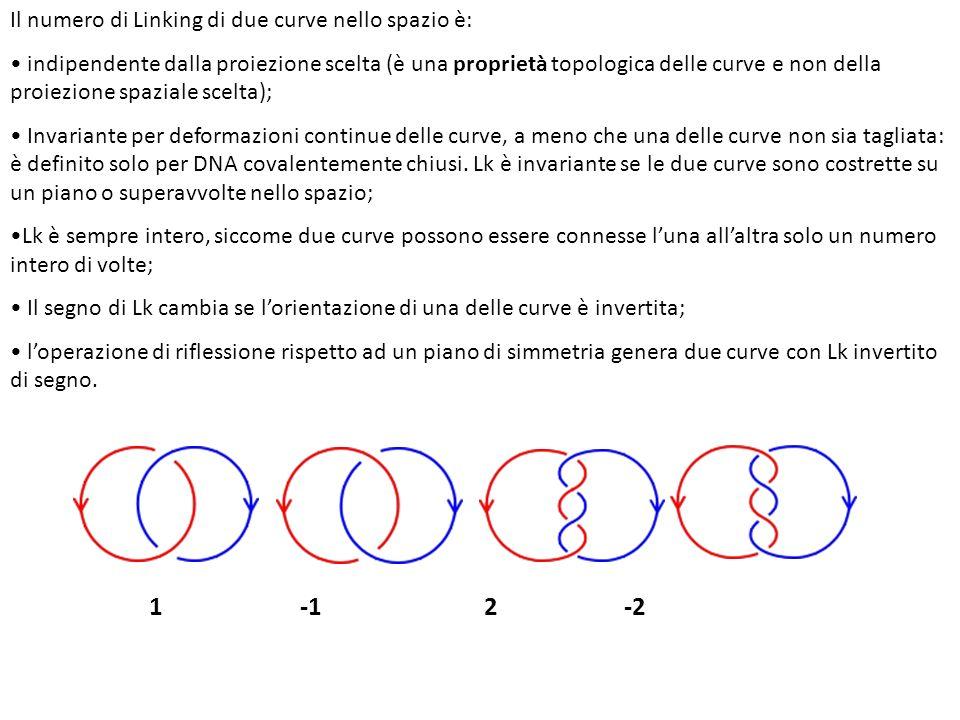 1 -1 2 -2 Il numero di Linking di due curve nello spazio è: