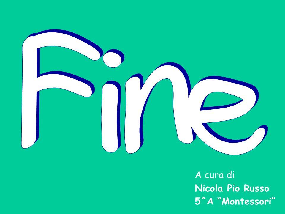 Fine A cura di Nicola Pio Russo 5^A Montessori
