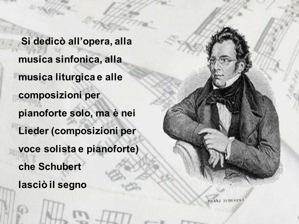 Si dedicò all'opera, alla musica sinfonica, alla musica liturgica e alle composizioni per pianoforte solo, ma è nei Lieder (composizioni per voce solista e pianoforte) che Schubert