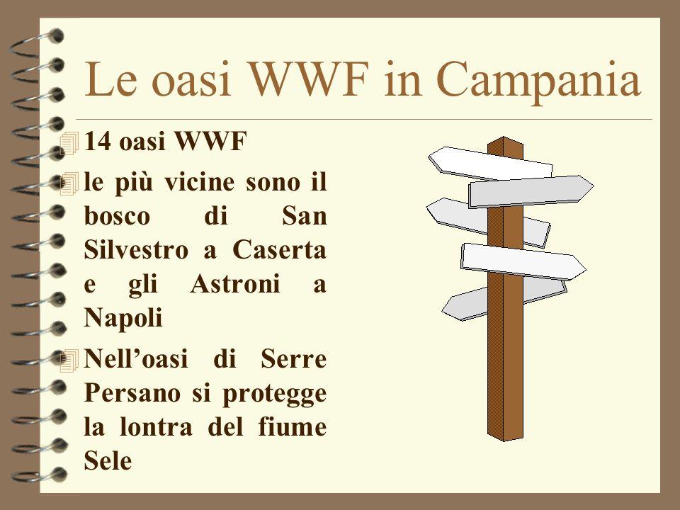 Le oasi WWF in Campania 14 oasi WWF
