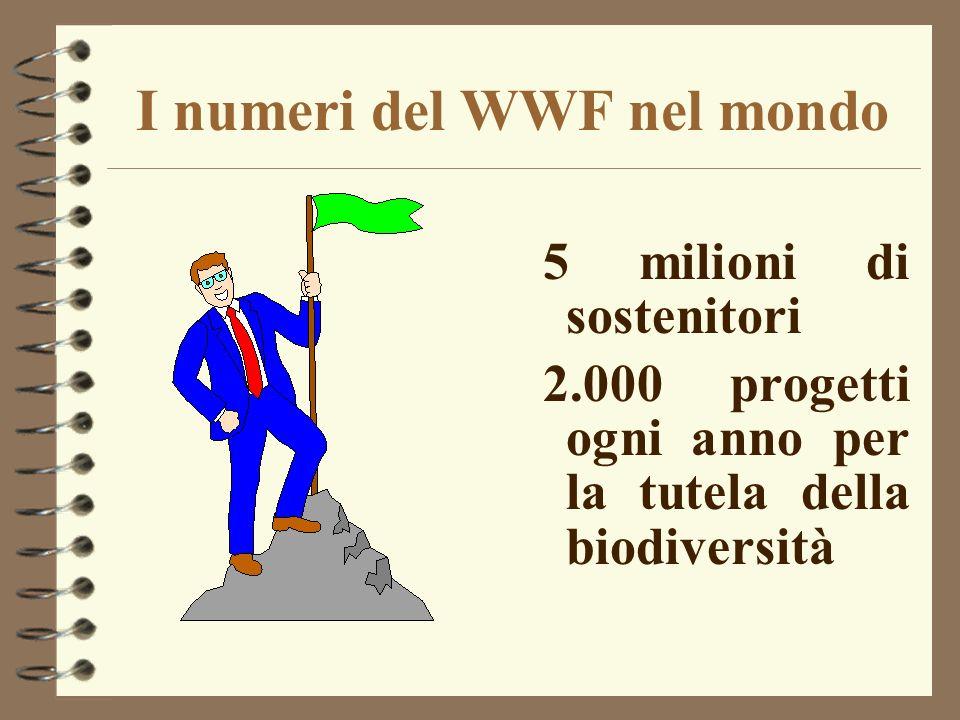 I numeri del WWF nel mondo