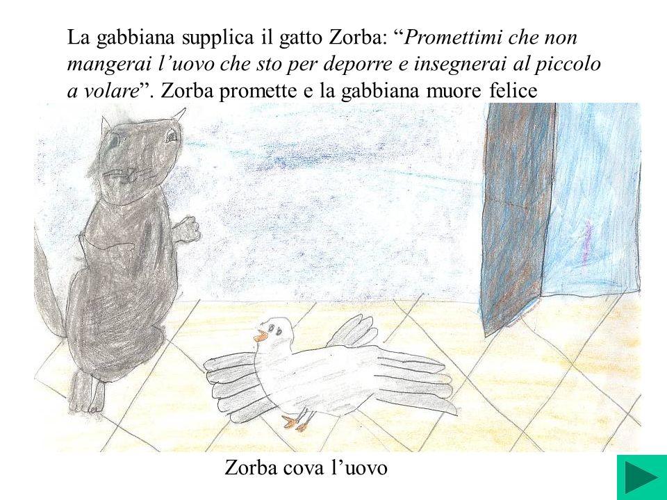 La gabbiana supplica il gatto Zorba: Promettimi che non mangerai l'uovo che sto per deporre e insegnerai al piccolo a volare . Zorba promette e la gabbiana muore felice