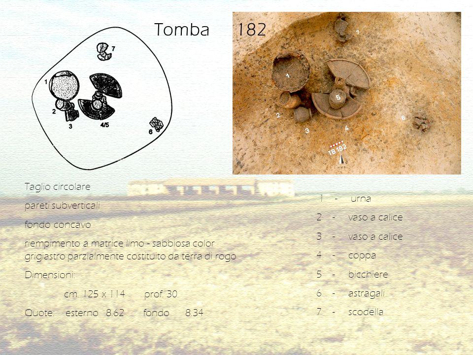 Tomba 182 Taglio circolare pareti subverticali 1 - urna fondo concavo